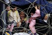 Châu Âu bất lực trước di dân