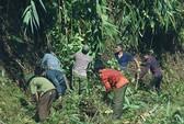 Rừng giao dân giữ bị mất dần: Không thể khoán trắng cho dân
