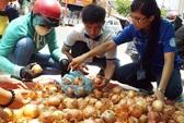 """Người Sài Gòn """"giải cứu hành tây"""" giúp nông dân Đà Lạt"""