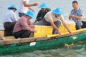 Bảo tồn ghẹ xanh Kiên Giang