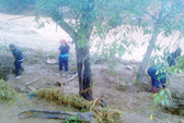 Bão số 1 gây thiệt hại nặng nề: 11 người chết và mất tích