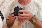 Tìm thấy mảnh thiên thạch 4,5 tỷ năm tuổi