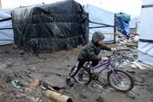 """Pháp: Dẹp """"rừng"""" tị nạn, mất hút 129 trẻ em"""
