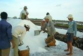 Muối ế trắng đồng, kho dự trữ hoang phế