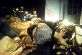 50 cảnh sát PCCC căng mình dập lửa trong đêm