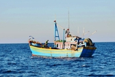 Khẩn trương tìm cách giải cứu 8 tàu cá bị nước ngoài bắt giữ