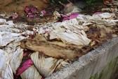 Vứt hàng trăm xác heo thối ra thượng nguồn sông Sài Gòn