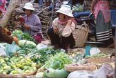 Campuchia lo nông sản nhiễm hóa chất độc hại