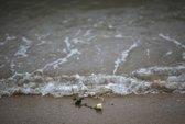 12 năm trôi qua, 400 nạn nhân sóng thần vẫn đơn côi
