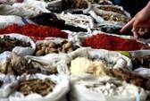 Vấn nạn dược liệu Trung Quốc giả, kém chất lượng
