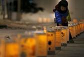 Thảm họa Nhật Bản: Vẫn thấy gương mặt những người chết
