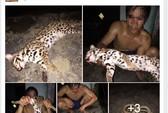 Xác minh thanh niên khoe ảnh làm thịt mèo rừng quý hiếm trên facebook