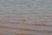 Thi thể người đàn ông nằm sấp, không mặc quần nổi trên sông