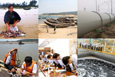 Tháng 8-2016, thanh tra về môi trường tại Hà Tĩnh