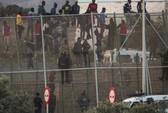 """Hơn 1000 người cố vượt hàng rào sang Tây Ban Nha """"ăn tết"""""""