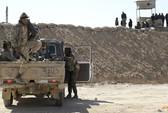 """IS """"xin"""" quân đội Syria cho rút khỏi biên giới"""