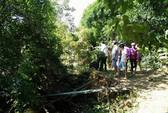 Đi câu, phát hiện thi thể phụ nữ trôi trên sông Đồng Nai