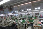 Công nhân Công ty Green Apparel Việt Nam trở lại làm việc