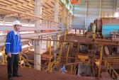 Phó Thủ tướng yêu cầu rà soát 2 dự án bauxite