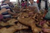 Lễ hội thịt chó Trung Quốc bất ngờ được tổ chức