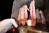 Thịt heo không rõ nguồn gốc vẫn tràn vào TP HCM