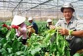 Nông nghiệp soán 'ngôi vương' kênh đầu tư 2017