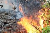 Chữa cháy rừng, 1 người thiệt mạng