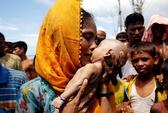 Hình ảnh chạm vào tim trong cuộc khủng hoảng Rohingya