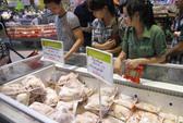 Gà đẻ loại thải Hàn Quốc lại bán tràn lan