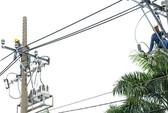 Petro Vietnam cho EVN trả nợ trong 7 năm
