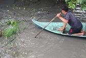 Vụ cá sấu sổng chuồng: 1 con bị đập chết ven Quốc lộ 1A