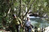Vụ xẻ vườn quốc gia làm thủy điện: Cơ quan chức năng đã đồng ý (?)