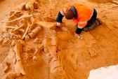 Tìm thấy xương voi ma mút gần Paris
