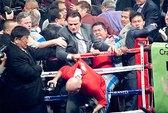 Chụp hình võ sĩ knock-out, nhà báo bị hành hung