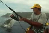 Cá mập bay lên cướp cá trên cần câu