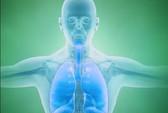 """Hạt """"thần kỳ"""" giúp duy trì sự sống mà không cần thở"""