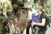 Đại sứ Đan Mạch đi chợ hoa Tết ở Hà Nội