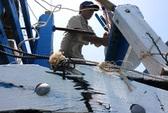 Xử lý nghiêm khắc vụ tàu Trung Quốc đâm hỏng tàu cá Việt Nam