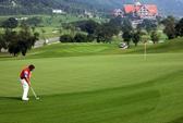 Golf và người