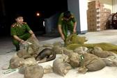 Bắt quả tang gần 100kg động vật hoang dã
