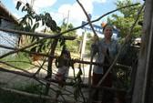 Tranh chấp đất, một hộ dân rào kín cổng trường