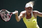 Wozniacki tranh tứ kết WTA Charleston, Stosur bỏ cuộc