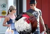 Justin Theroux và Jennifer Aniston mua nhà vì... gà