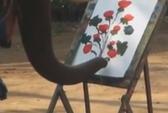 Xem clip voi vẽ hoa, giả cụt chân ăn xin