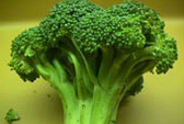 Ăn nhiều rau xanh để phòng bệnh Parkinson