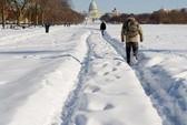 14 bang nước Mỹ chìm trong bão tuyết