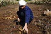 Hố sâu giàu nghèo ở Trung Quốc
