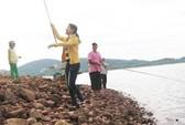 Lên hồ câu cá bống
