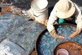 Nhớ mãi gỏi sứa đầm Ô Loan