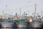 Hàn Quốc: Tàu đánh cá đụng tàu hàng, 8 người mất tích